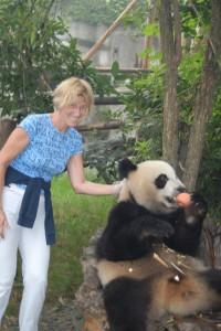 Lydia Ninz füttert Panda in Chengdu mit Äpfel
