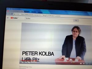 Peter Kolba erklärt Sammelklagen