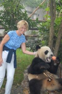 Chengdu: Einen Apfel für den wilden Panda